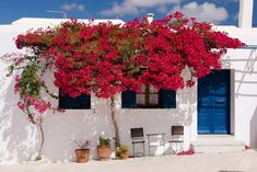 pink-world-travel-greece-santorini-greek-travelblog.jpg0