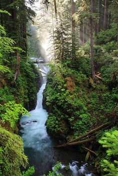 Sol Duc Falls, Washington Have spent time in such beauty but never managed to capture it like this pic does. Sol Duc Falls is most beautiful waterfall in Olympic National Park.This park located in Washington. Oh The Places You'll Go, Places To Travel, Places To Visit, Beautiful Waterfalls, Beautiful Landscapes, Foto Nature, Photos Voyages, The Great Outdoors, Wonders Of The World