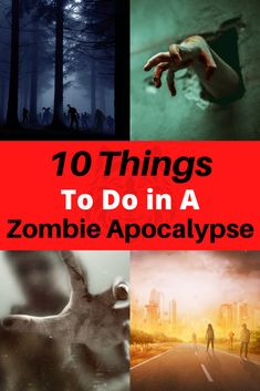 We've done the research to find out the 10 most helpful things that you can plan for and have prepared for a zombie apocalypse. Best to be prepared! Zombie Apocalypse Movie, Zombie Apocalypse Survival, Surviving In The Wild, That One Friend, Homestead, How To Find Out, How To Plan, Garden, People