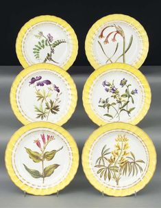 Six Derby (Duesbury & Kean) yellow-ground botanical plates CIRCA 1800, BLUE CROWNED CROSSED BATONS AND D MARKS, TITLED IN BLUE SCRIPT, PATTERN NUMBER 216 Painted in the manner of John Brewer with specimen sprays, named to the reverse, within gilt bands of berried laurels, the spirally fluted borders with broad yellow bands between gilt lines Each 8 7/8 in. (22.5 cm.) diam. (6)