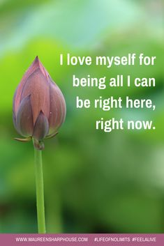 <3 <3 <3 #lifeofnolimits #feelalive #maureensharphouse #lifecoach #mentor #nlp