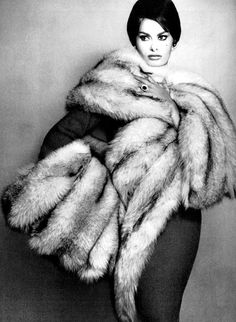 Sophia Loren is swathed in gold-glinted blue fox stole and muff by Revillon, jewelry by Schlumberger, photo by Richard Avedon, Harper's Bazaar, July 1959 Vintage Fur, Mode Vintage, Vintage Glamour, Sophia Loren, Old Hollywood Glamour, Vintage Hollywood, Classic Hollywood, Divas, Gq