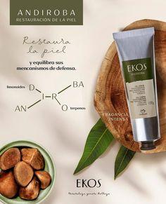 Natura Cosmetics, Perfume, Food, History, Ladies Accessories, Beauty, Deodorant, Fragrance, Products