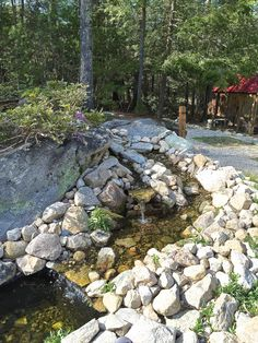 Water pond~Fish Pond~Water feature