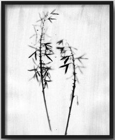 "Etsy Shop: Minimal Instant ""Botanical Black & White Print Set"""