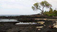 Miloli'i coastline on the Big Island of Hawaii is the picture of remote and rugged beauty