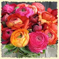 a bouquet of ranunculus and peonies will suffice...