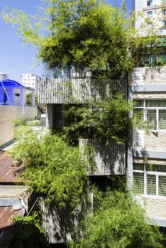 Gallery of Bamboo House / VTN Architects - 1