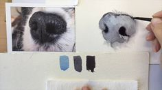 How to paint a dog's black nose