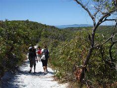 A Noosa Trail Network walk past Noosa North Shore.
