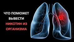 Вот что может поправить здоровье курильщику