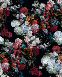 Undermatic Floral Wallpaper Iphone, Vintage Floral Wallpapers, Flowery Wallpaper, Rose Wallpaper, Pretty Wallpapers, Amazing Wallpaper, Flower Backgrounds, Aesthetic Backgrounds, Wallpaper Backgrounds
