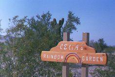 Celia's Rainbow Gardens at Quartzsite Town Park is amazing Desert Botanical Gardens. A Must see while visiting Quartzsite, Arizona! www.VisitQuartzsite.com