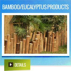Bamboo and Eucalyptus Products