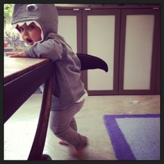 I can't stop taking pictures of the baby in her homemade shark costume. I know it's way too early for Halloween, but after we sewed on the menacing back fin a few days ago, I had to try…