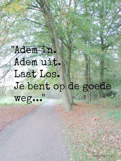 LizLohren.nl *** Blogpost: '365 Dagen Positief ~ Adem in. Adem uit.' *** http://lizlohren.nl/365-dagen-positief-10/