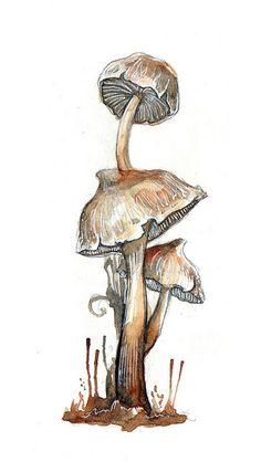 Summer Font i by ~amwah on deviantART Mushroom Drawing, Mushroom Art, Botanical Art, Botanical Illustration, Illustration Art, Watercolor Pictures, Watercolor Sketch, Mushroom Pictures, Marker Art