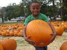 Jonesboro First United Methodist Church Pumpkin Patch in Jonesboro, Georgia.