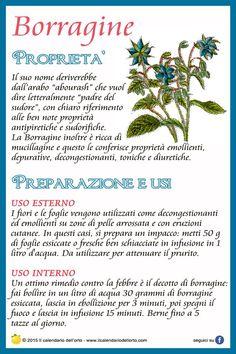 Borragine Love Natural, Natural Life, Natural Health, Magic Herbs, Herbal Magic, Aromatic Herbs, Medicinal Plants, Herbal Remedies, Natural Remedies
