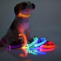 Type: DogsDog Harness Type: Basic Halter HarnessesType: CollarsBrand Name: panDaDaMaterial: NylonDog Leash Type: Basic LeashesFeature: PersonalizedSeason: All SeasonsCollar Type: NonePattern: Solid