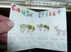 cause/effect ideas