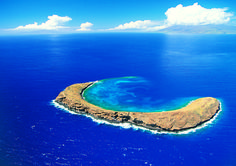 The 5 Best Molokini Crater Tours, Trips & Tickets - Maui   Viator
