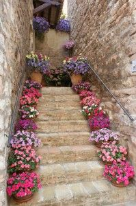 Spello, Italy~  Steps up a flower-lined alleyway