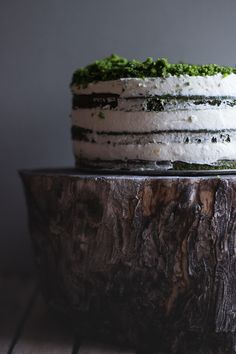 Forest moss | Spinach cake