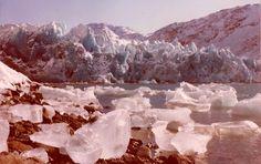 Arsuk glacier isbræ, Grønnedal