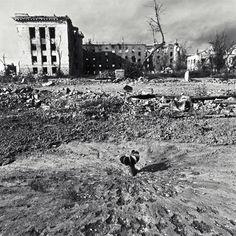 « Somewhere over Grozny », 1995