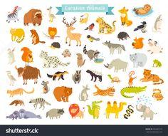 Eurasian animals vector illustration. Eurasian mammals. The most complete big vector set of mammals in Eurasia. Also, birds, reptiles. Isolated on white background. Eurasian animals art #354381515
