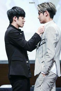 S.coups & Mingyu