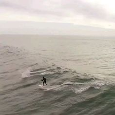 Surfing with Friends Beautiful Photos Of Nature, Beautiful Ocean, Amazing Nature, Surfing Videos, Surfing Photos, Funny Dolphin, Horse Girl Photography, Nature Gif, Its A Mans World