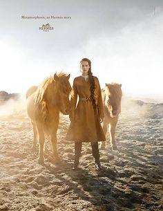 Hermes-Metamorphosis-horses2.png 400×517 ピクセル