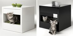 End table & cat bed= awesome piece of furniture.