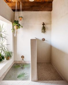 Buying Guide + Project Experts = Your Beautiful New Shower System!