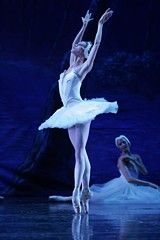 Tucson's ballet pros hope a recent movie's success bolsters attendance at their 'Swan Lake' Ballet Art, Ballet Dancers, Ballerina Tattoo, Ballet Tattoos, Swan Lake Ballet, La Bayadere, Ballet Images, Pretty Ballerinas, White Swan