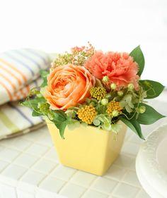 http://item.rakuten.co.jp/fine-flower/ag222/