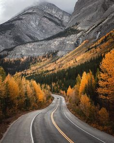 Icefields Parkway in fall (Jasper, Alberta) by Quin (@everchanginghorizon) on Instagram cr.c.