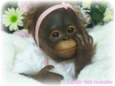 "Reborn ~Baby Bindi ~ Orangutan Monkey 16"" KIT by Denise Pratt 3046"