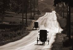 Buggies En Route, David Lorenz Winston