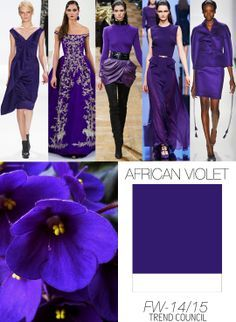 Fall 2014/15 color forecast | color trends 2014 / 2015 - FINALLY some great purples for fashion!!