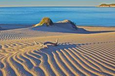 Los Algodones Sand Dunes, San Carlos, Sonora, Mexico by Craig Tissot on 500px