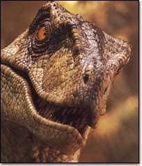 Jurassic Park Raptor, Blue Jurassic World, Dinosaur Wallpaper, Old Rock, Dinosaur Art, Face Photo, Prehistoric, Sculpture Art, Fantasy Art