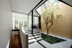 Skylight House / Chenchow Little Architects