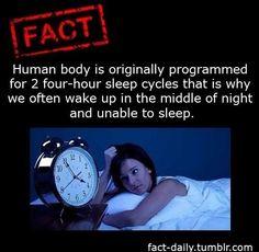 fun fact about sleep