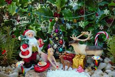 2015 The Christmas Fairy Garden Kit
