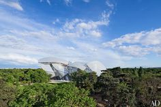 Frank Gehry: Foundation Louis Vuitton