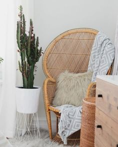 Love the cactus in Helena Glazer's apartment? The Brooklyn Blonde blogger elevated it by stacking trashcans! Click for more tips and pictures inside her cute home.