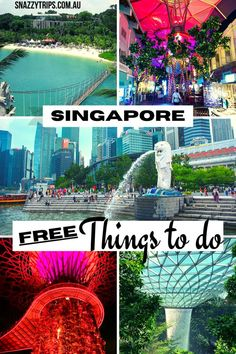 Singapore is known as one of the most expensive cities in the world to visit. So you may not believe me when I tell you there are many fantastic free things to do in Singapore. I will list 12 activities you can do for zero cost to help stretch your holiday budget further when travelling here in the future. Furthermore, many of these are some of the best attractions you will ever experience. #singapore #singaporeblog #singaporetravel #singaporevisit #snazzytrips